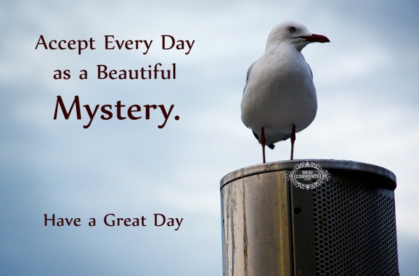 Accept Every Day As A Beautiful Mystery