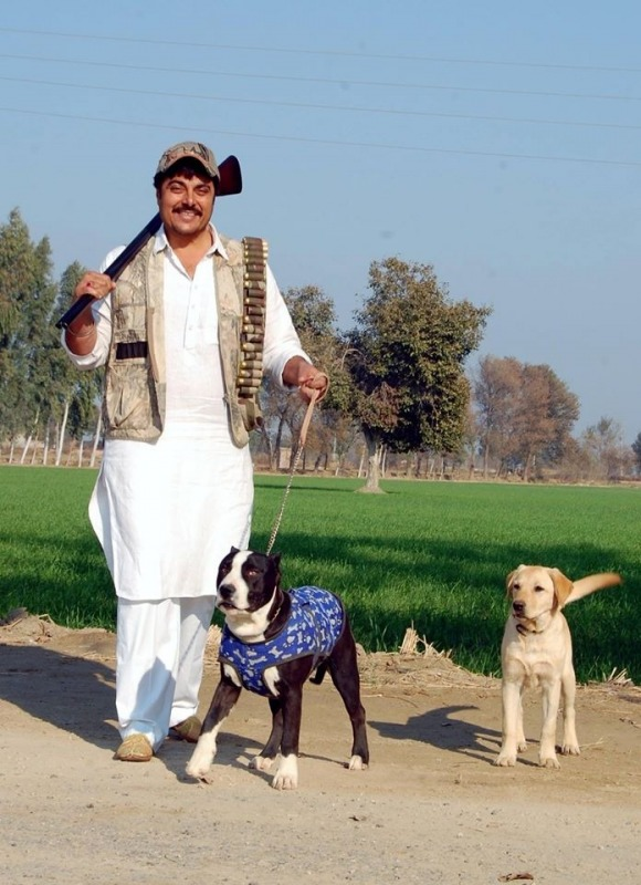Guggu Gill With Two Dogs