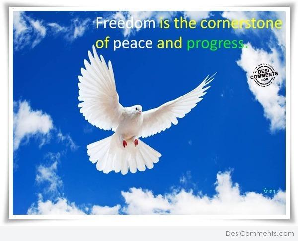Freedom is the cornerstone of peace and progress