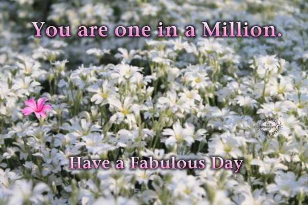 Have a fabulous day - You are one in a million
