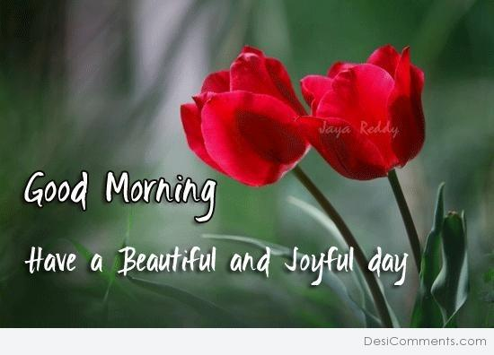 Good Morning - Have a beautiful and joyful day