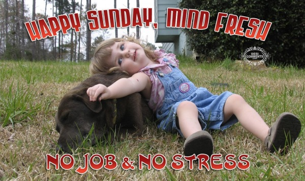 No Job & No Stress