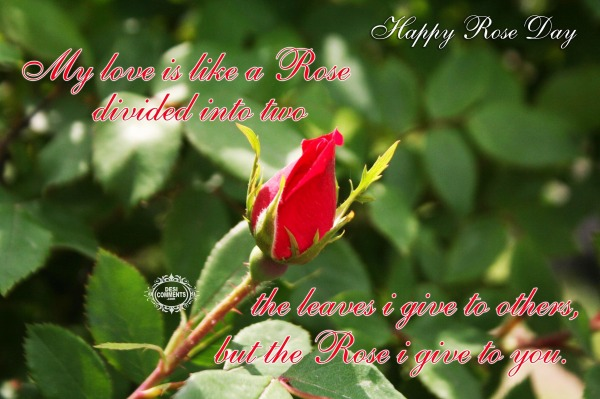 Happy Rose Day - The rose I give to you