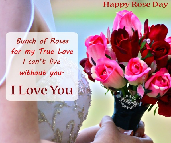 Happy Rose Day - Bunch of roses for my true love