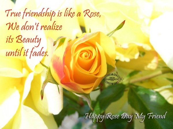 Happy Rose Day - True friendship is like a rose...