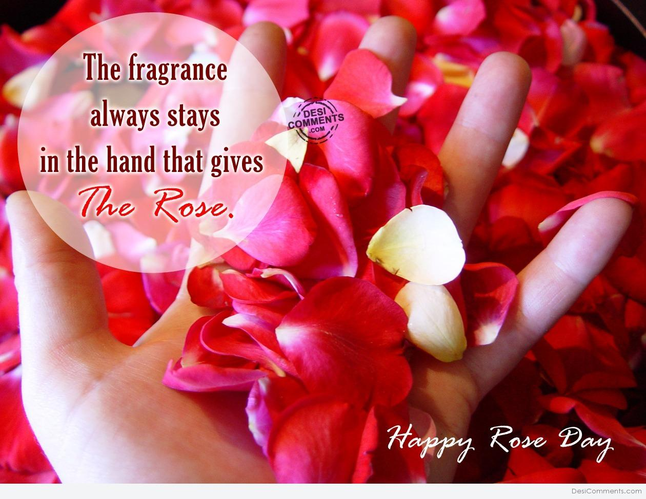 Rose Day Pictures, Images, Graphics For Facebook, Whatsapp