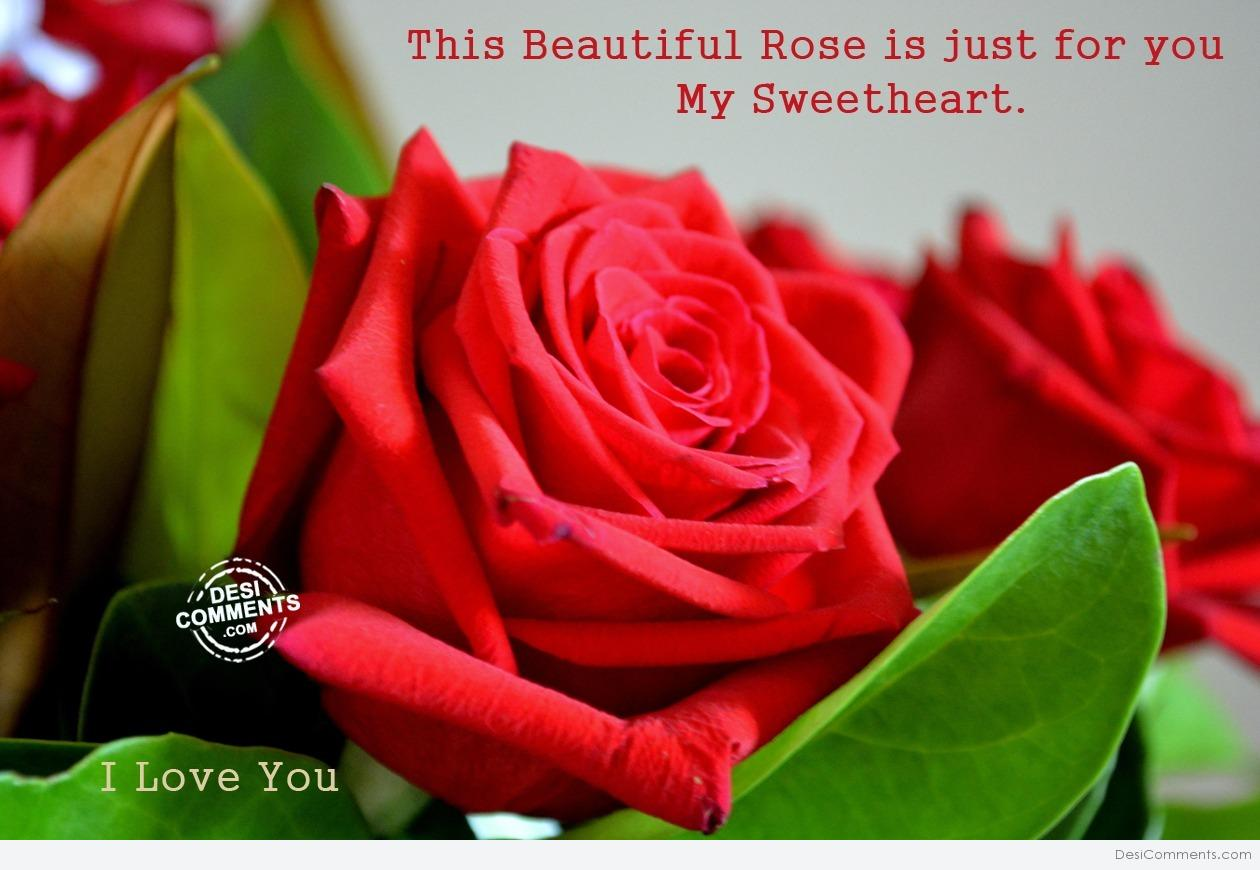 This Beautiful Rose Is Just For You My Sweetheart