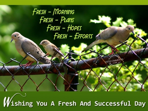 Wishing you a fresh and successful day