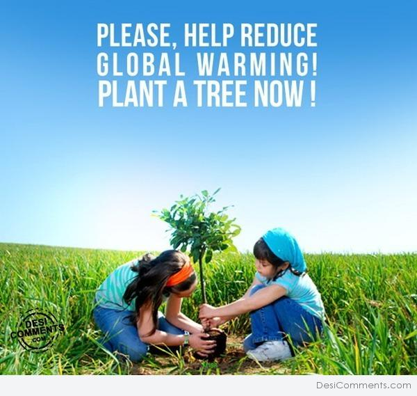 essay on tree plantation day Free essays on tree planting if an individual has an opportunity to plant a tree, even if he knows the day of judgment is imminent, let him plant the tree.