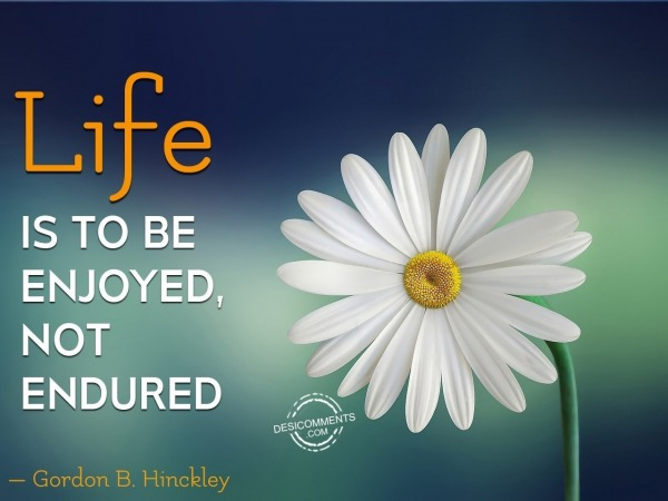 Life Is Not To Be Endured