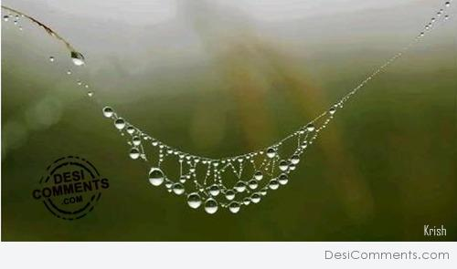 Necklace of rain drops