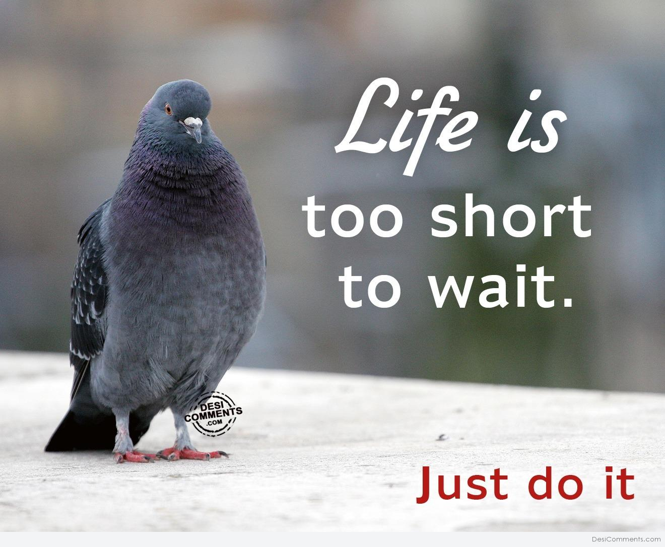 life too short Life is too short definition at dictionarycom, a free online dictionary with pronunciation, synonyms and translation look it up now.