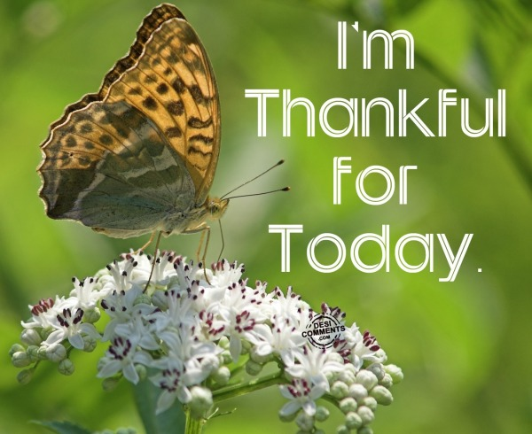 Picture: I'm Thankful For Today