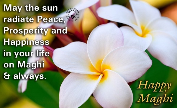 May the Sun radiate peace