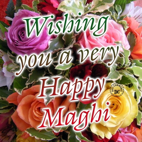 Picture: Wishing you a Very happy Maghi