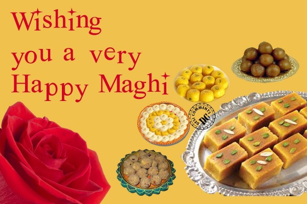 Wishing you a happy maghi