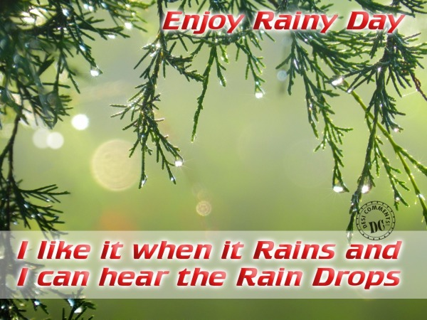 Enjoy Rain day