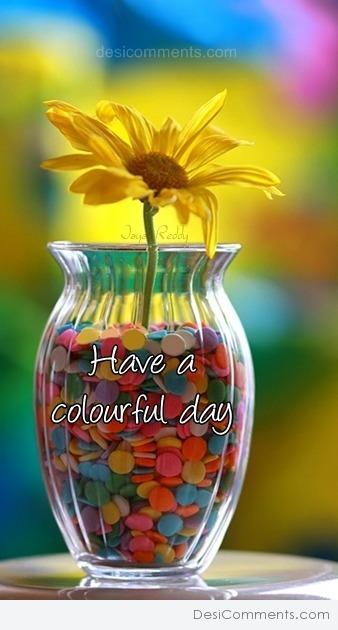 Picture: Have Colorful Day