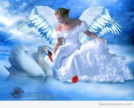 angel pictures images graphics for facebook whatsapp