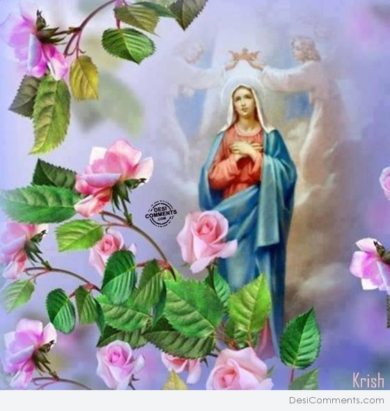 holy mary wallpapers