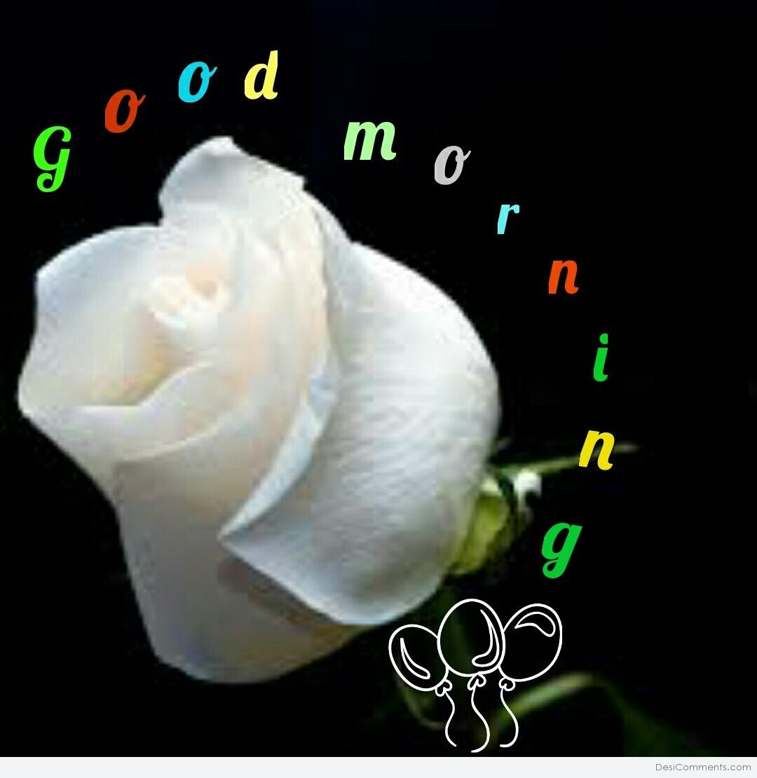 Good morning With White Flower - DesiComments.com