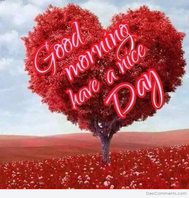 Good Morning Have A Nice Day Desicommentscom