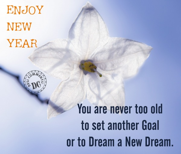 Picture: Enjoy New Year