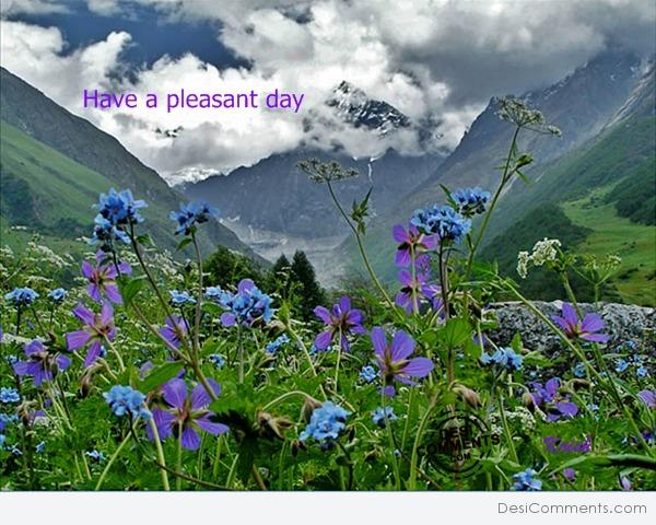 Have pleasant day