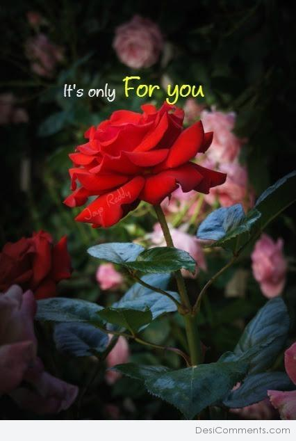 It's Only For You