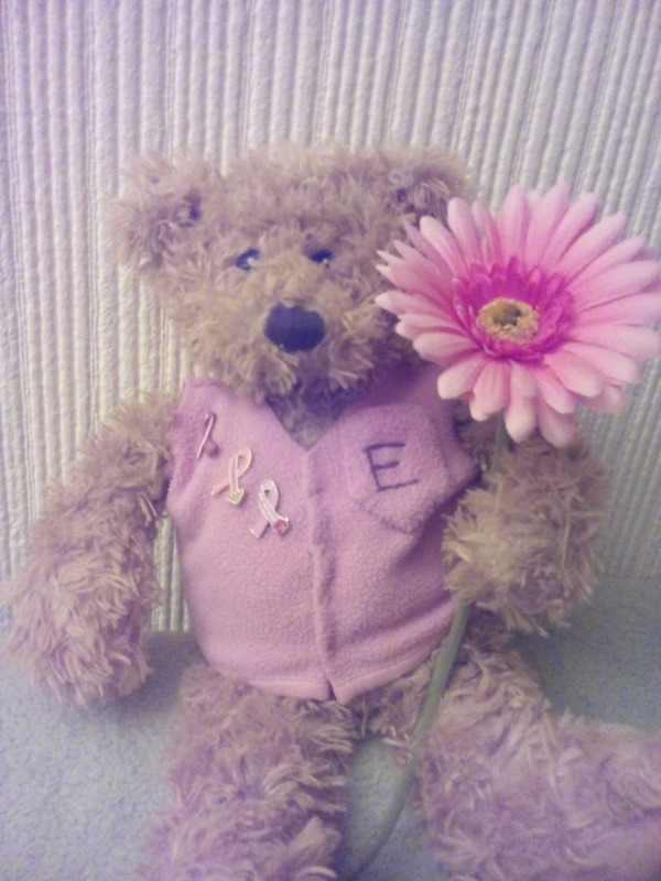 Cancer support bear
