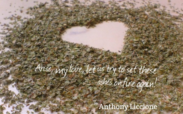 Picture: Arise, my love, let us try to set these ashes on fire again