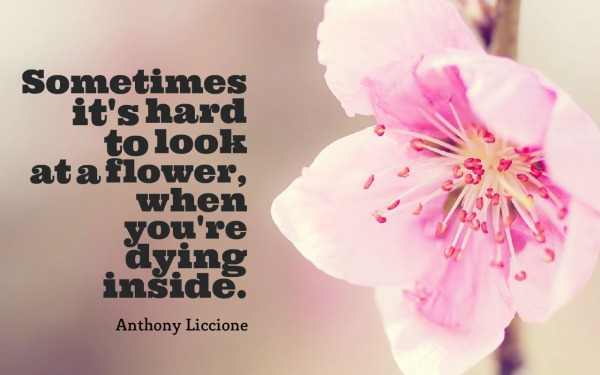Picture: Sometimes it's hard to look at a flower