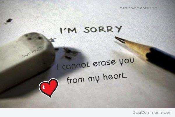 Picture: I'm Sorry