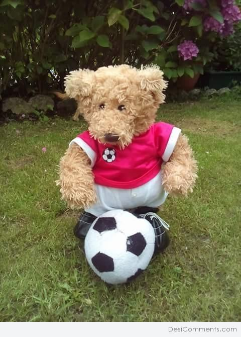Picture: Teddy Bear With Football