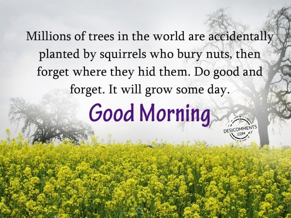 Do Good And Forget - Good Morning