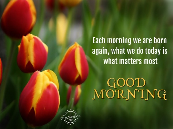 Each Morning We Are Born Again - Good Morning