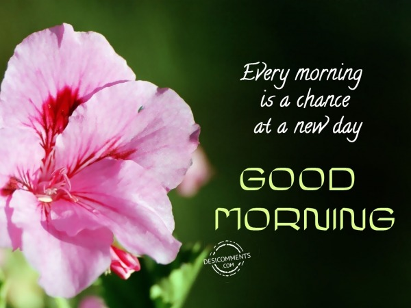 Every Morning Is A Chance At A New Day - Good Morning