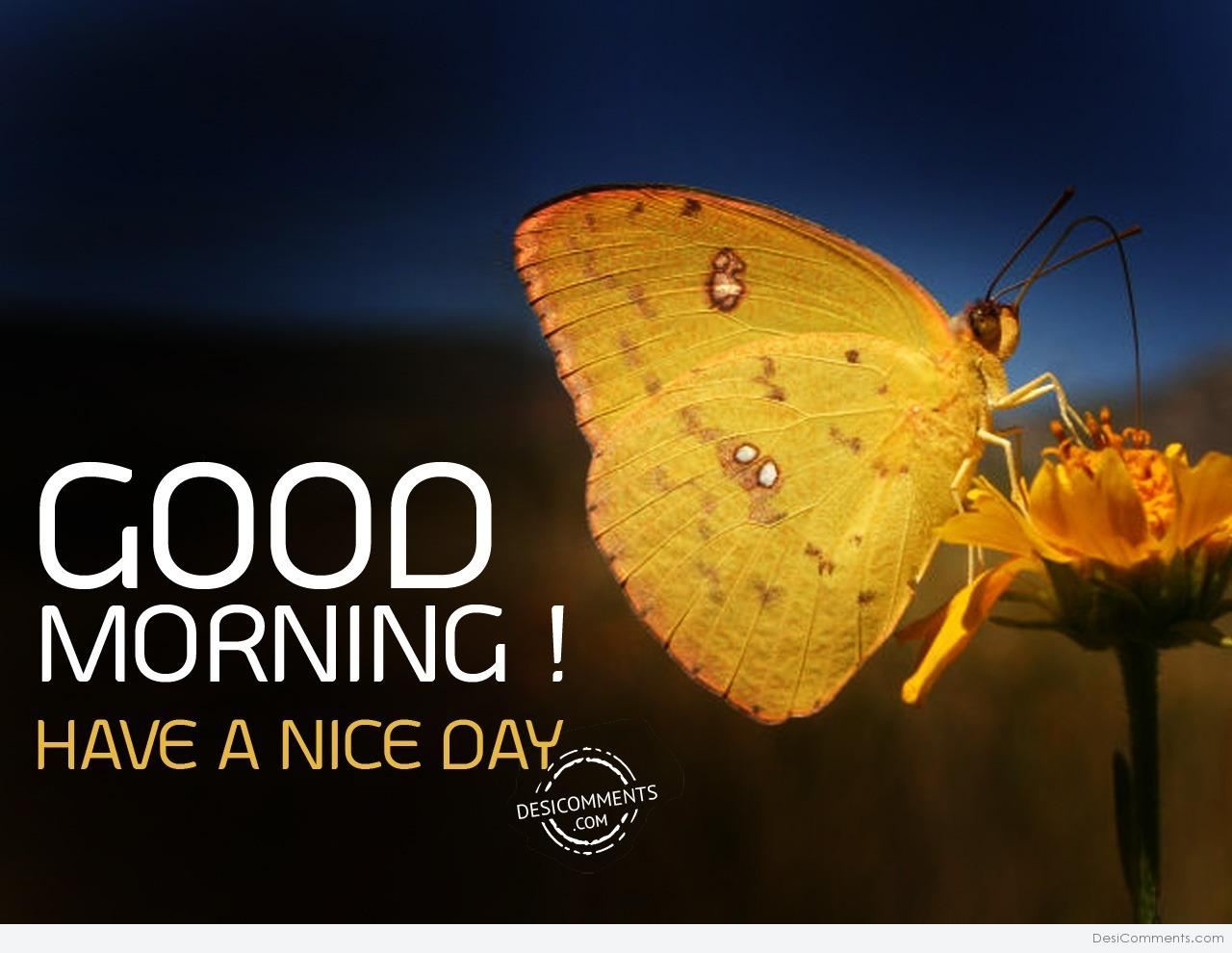 Good Morning Have A Nice Day - DesiComments.com