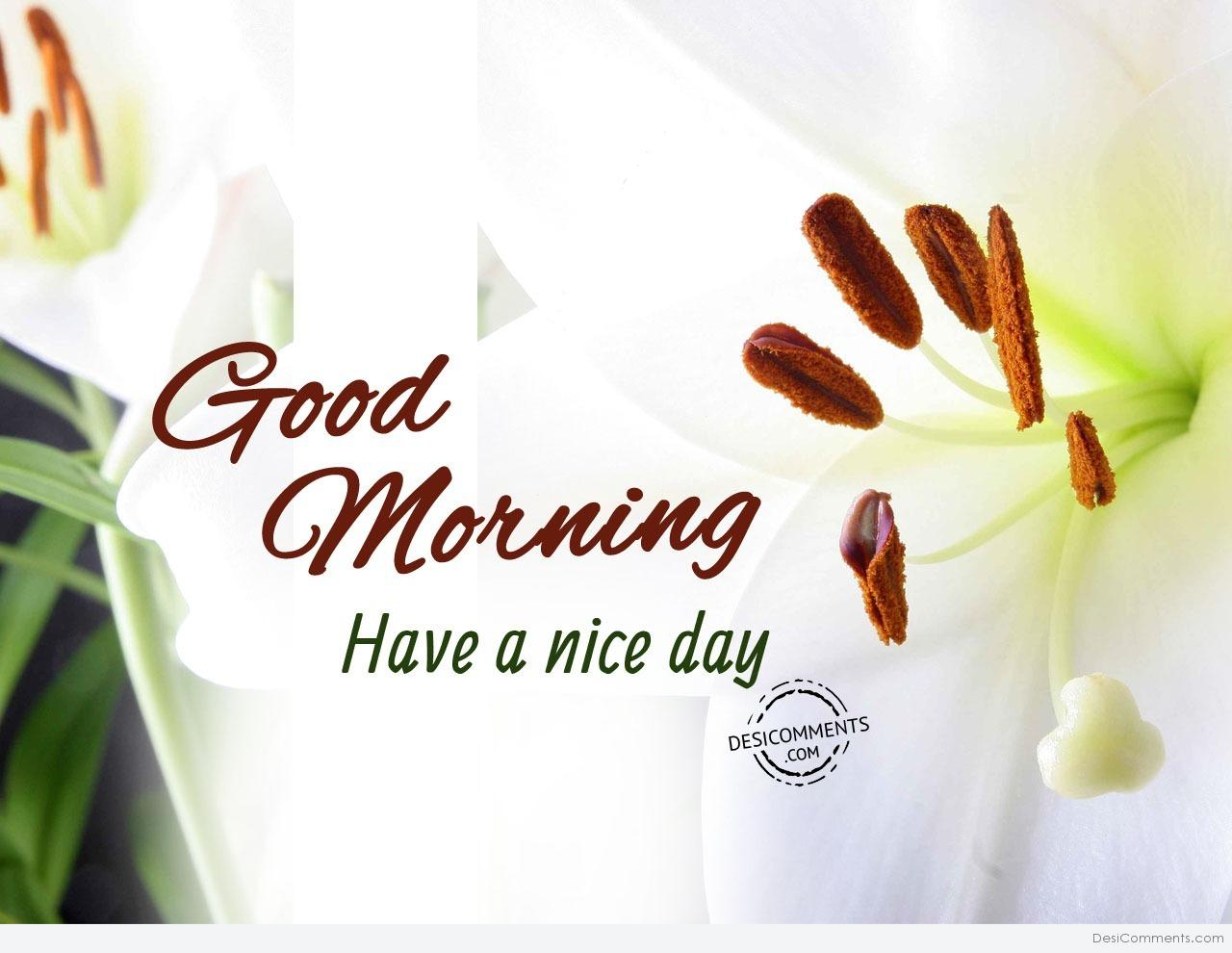 Good Morning Have A Great Day : Good morning have a nice day desicomments