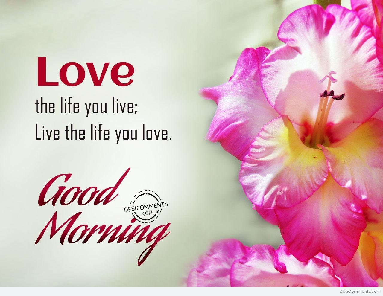 Love The Life You Live Good Morning Desicommentscom