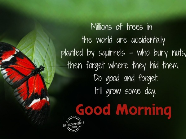 Millions Of Trees In The World - Good Morning