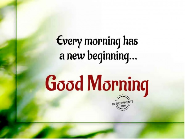 New Beginning - Good Morning