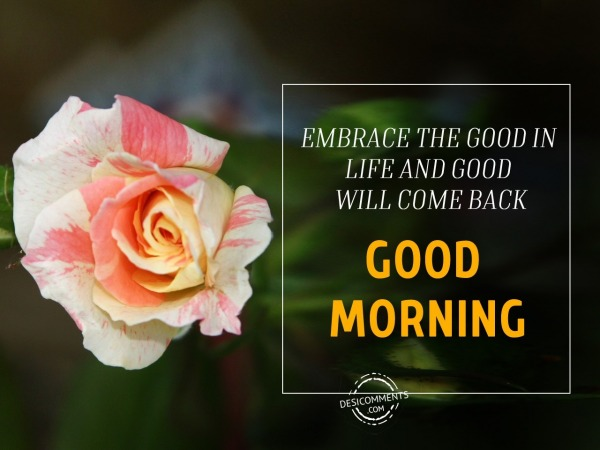 Picture: Will Come Back – Good Morning