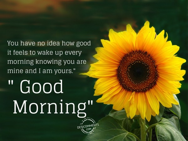Picture: You Are Mine – Good Morning