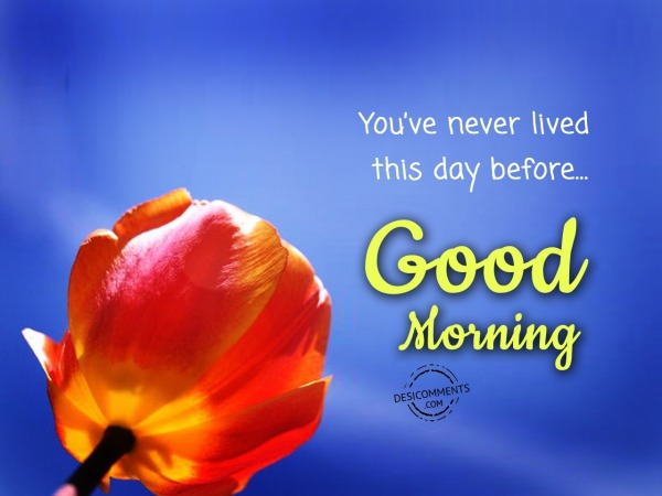 Picture: You've Never Lived This Day Before – Good Morning
