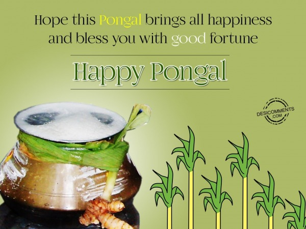 Hope this pongal brings all happiness