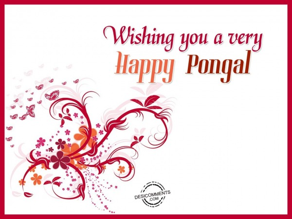 Picture: Wishing you a very Happy Pongal