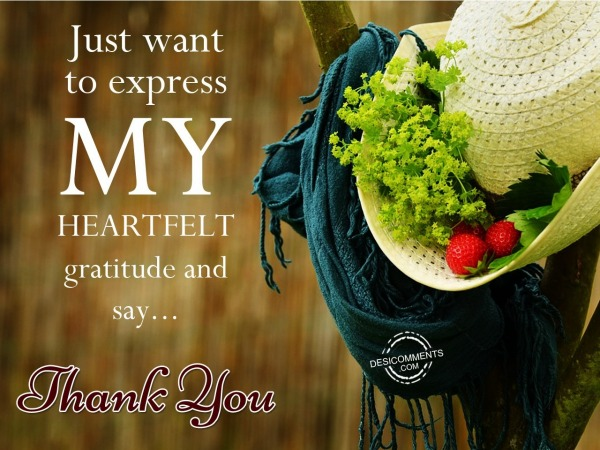 Just want to express my heartfelt gratitude and say…