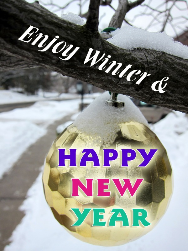 Enjoy Winter And Happy New Year