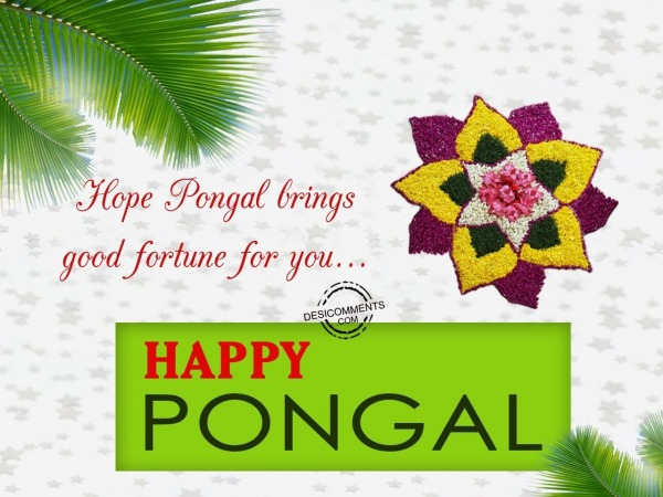 Hope pongal brings good fortune for you